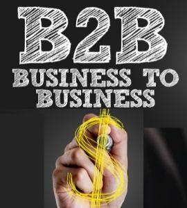Empresa: Consultoria em Vendas B2B