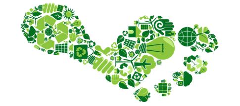 Sustentabilidade e Transformação Digital: um nó analógico